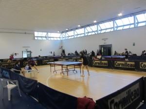 campionato 8-2-2014 il concentramento di C femm- gir. B
